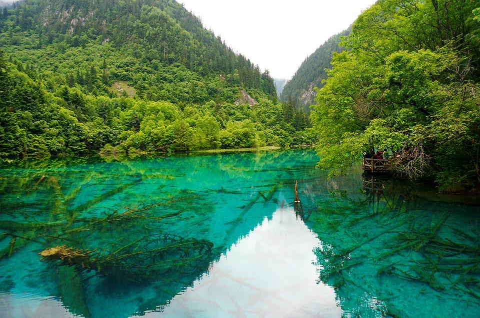 Séjour en Chine en famille : découvrir le pays à travers 3 incontournables