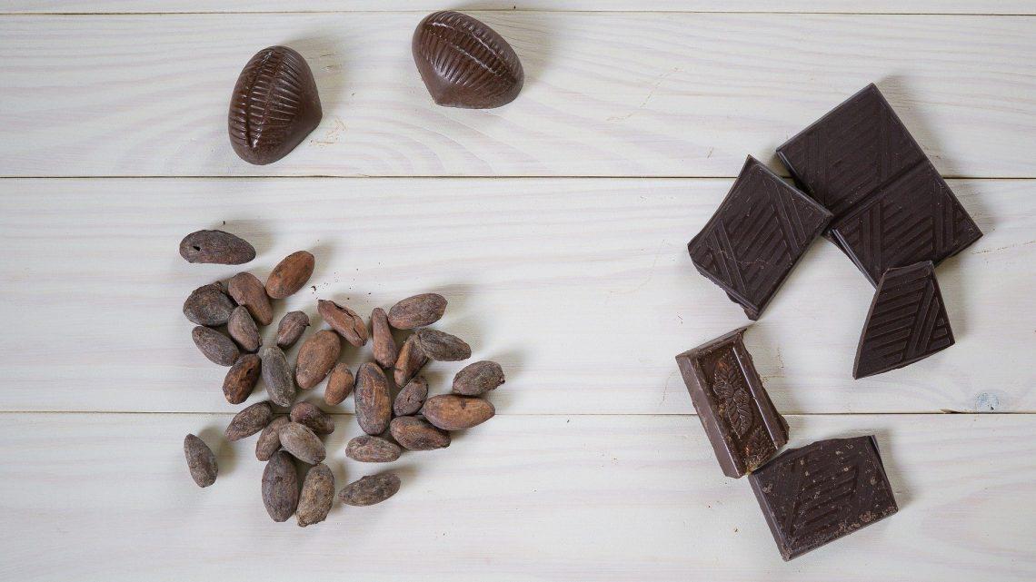 Les bienfaits et les utilisations de cacao bio